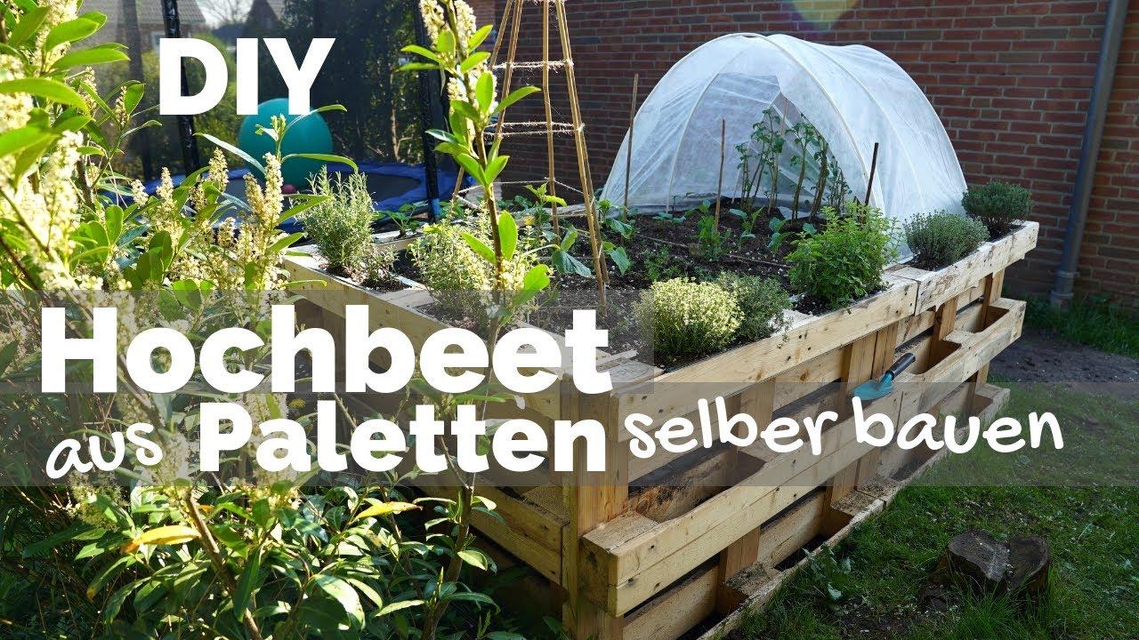 Hochbeet Aus Paletten Selber Bauen Anlegen Befullen Bepflanzen Garten Diy Anleitung