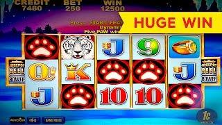 White Tiger Slot - 5 SYMBOL TRIGGER - BIG WIN BONUS! screenshot 3