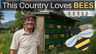 This Country Loves BEES (SLOVENIA)