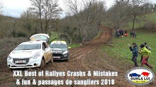 Best of XXL Rallyes 2018 Crashs & mistakes & fun & passages de sanglier