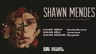 Shawn Mendes - Tour 2019