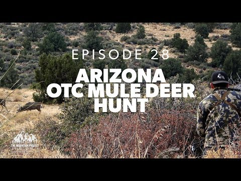 Public Land... Over-the-counter - Ep.28 - Arizona Archery Mule Deer