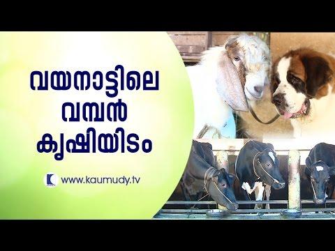 The Awesome farm in Wayanad | Haritham Sundaram | Kaumudy TV