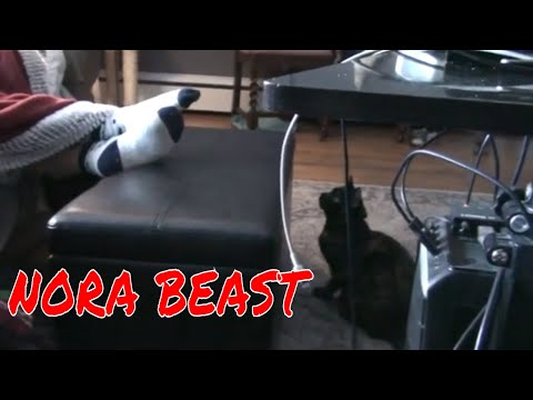 ATTACK OF THE NORA BEAST