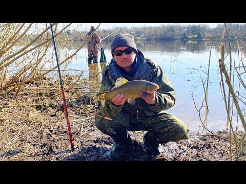 Рыбалка на реке Волхов | Фантастический бонус