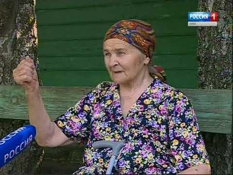 Шаги Великой Победы: специальный репортаж из Черемисиновского района