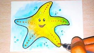Como Desenhar uma Estrela do Mar - How to Draw a Starfish