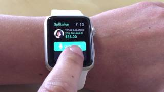 Splitwise For Apple Watch - Demo