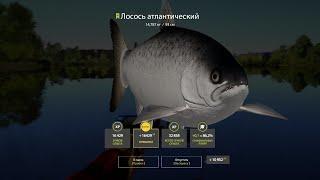 Русская рыбалка 4 - день #35 (турнир на лося)