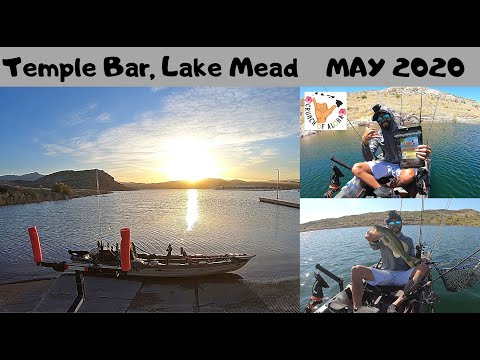 Temple Bar, Lake Mead: May 2020 Fishing With Subscribers!