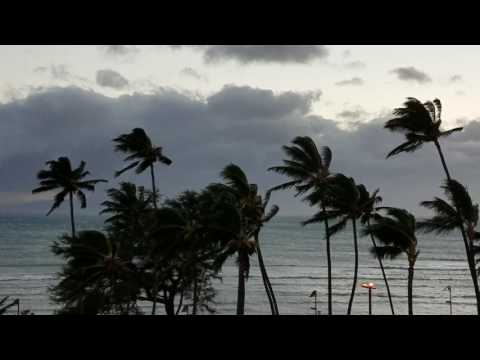 Maui wind storm