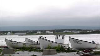 Little Boats Of Newfoundland - Roy Payne