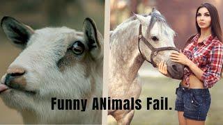 New Mad animals / funny animals 2020 * Funny animals fails * Failed Army