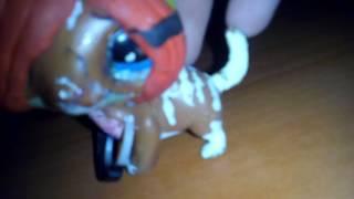 Клип  Кошка это дикий  зверь