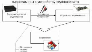 Этапы оцифровки и обработки видео