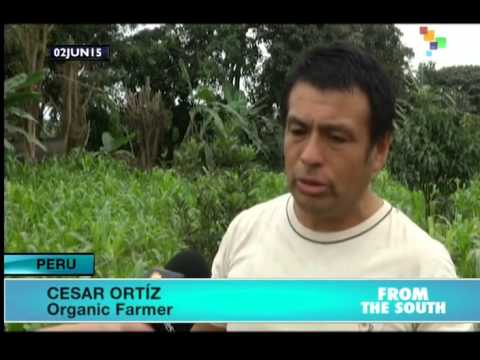 Organic Farmers in Peru Demand Laws to Promote Production