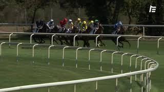 Vidéo de la course PMU CRITERIUM DU BEQUET - VENTES OSARUS