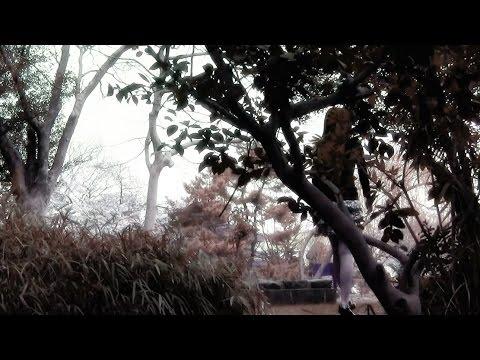 お花見の時に偶然撮影されたハプニングシーン!!(脚線美)