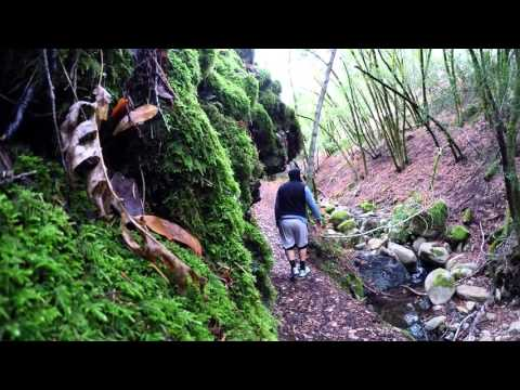 Uvas Canyon Hike - 1st Edit - Gopro Hero4 Silver