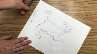 How-To-Draw: Cat