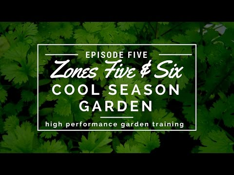 Growing a Cool Season Garden in Zones 5-6