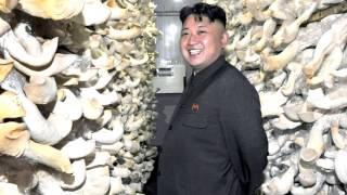 Загадочная и опасная Северная Корея