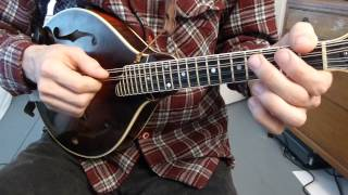 Swallowtail Jig (With Tabs) - Mandolin Lesson