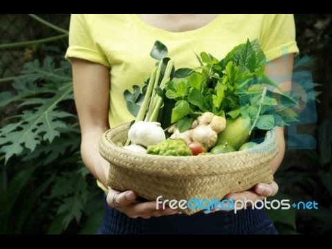 ▶ Paleo Diet Review   Do Paleo Diets Really Work
