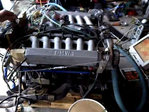 BMW V12 controlled by megasquirt MS1 Extra by Ray Bird