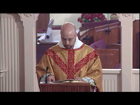 Daily Readings and Homily - 2020-11-22 - Fr. Miguel