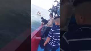 عاجل بالفيديو والصور انتشال 84جثة من مياه البحر المتوسط