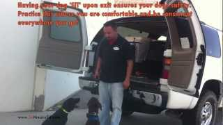 Teaching 2, 4 Month Old Puppies Car Manners (enhanced Boundaries)