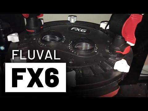 125 Gallon Freshwater Filtration Set-up - Fluval FX6 & 406