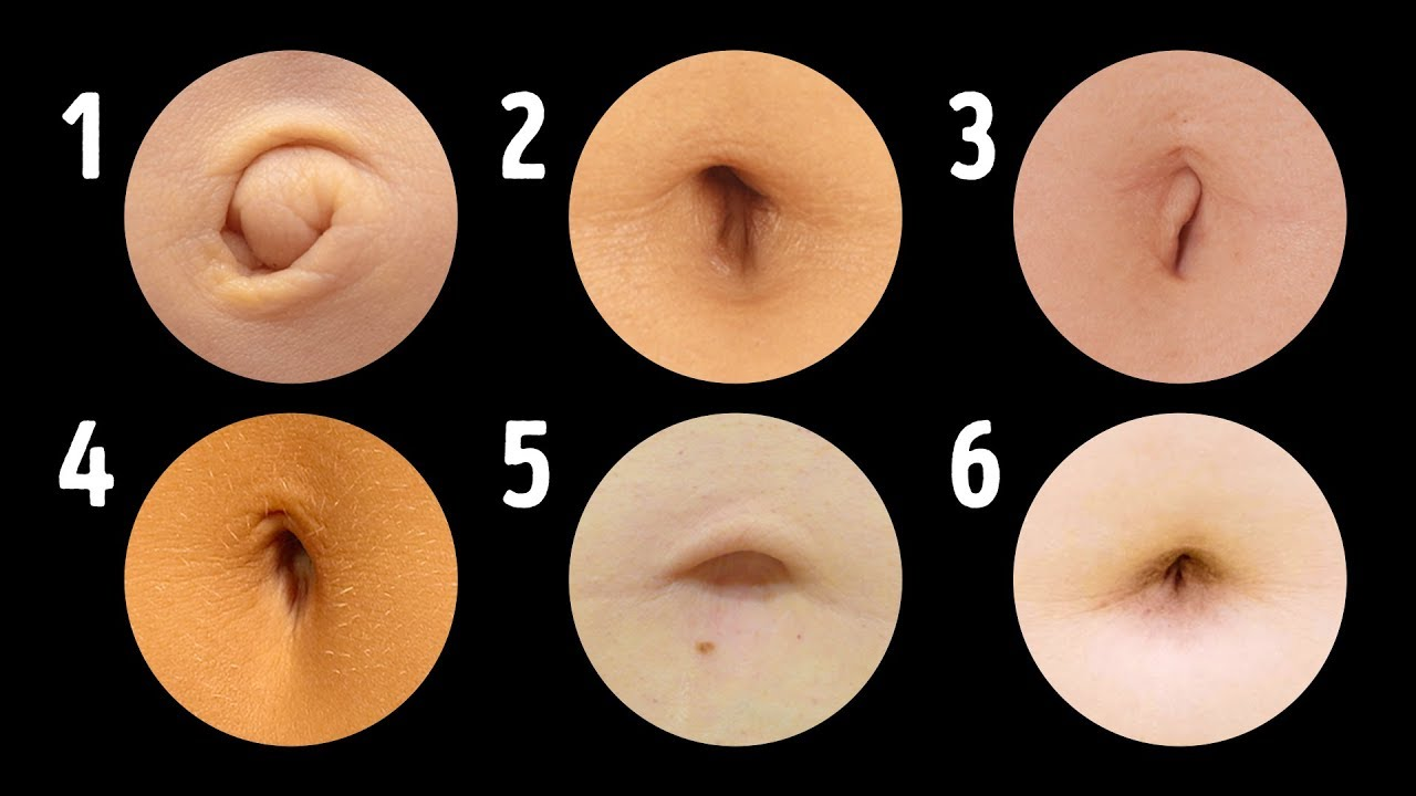 small resolution of 18 reasons your belly button is a very intriguing body part