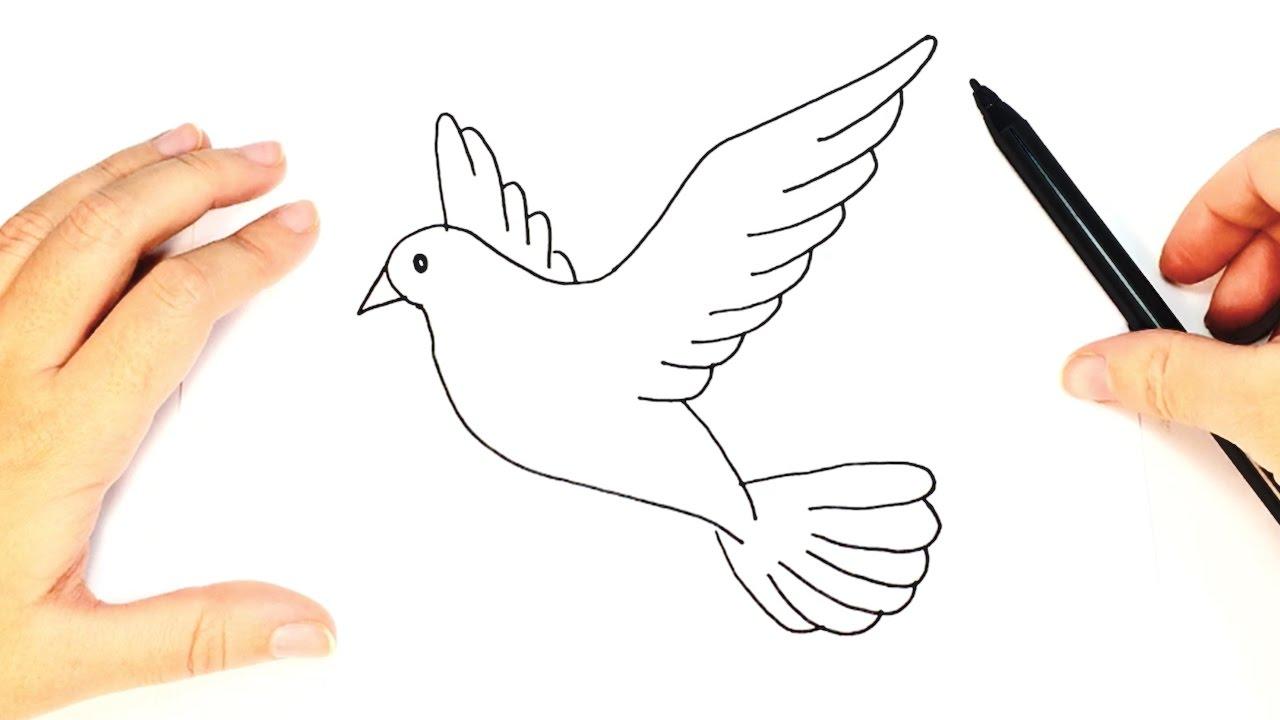 Cmo dibujar una Paloma  Dibujo fcil de una paloma paso a paso