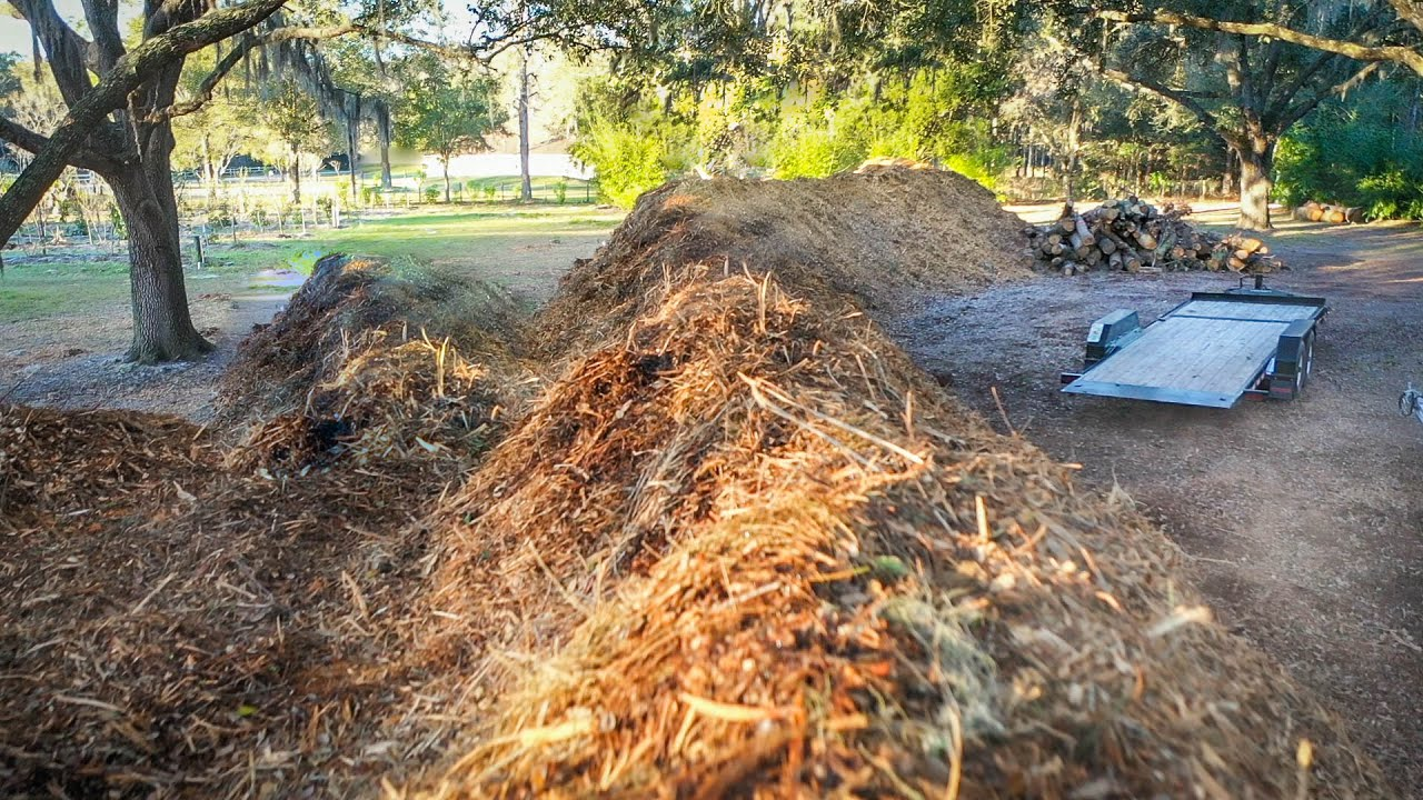 TOO MUCH MULCH?! Mulch Police (Update) + Exciting News Revealed