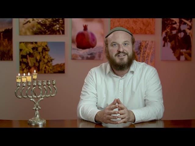 3rd Night of Chanukah – Rabbi Shlomo Katz