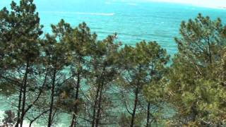 Balade au massif des Landes et bassin d Arcachon(nexus arena)(suite)