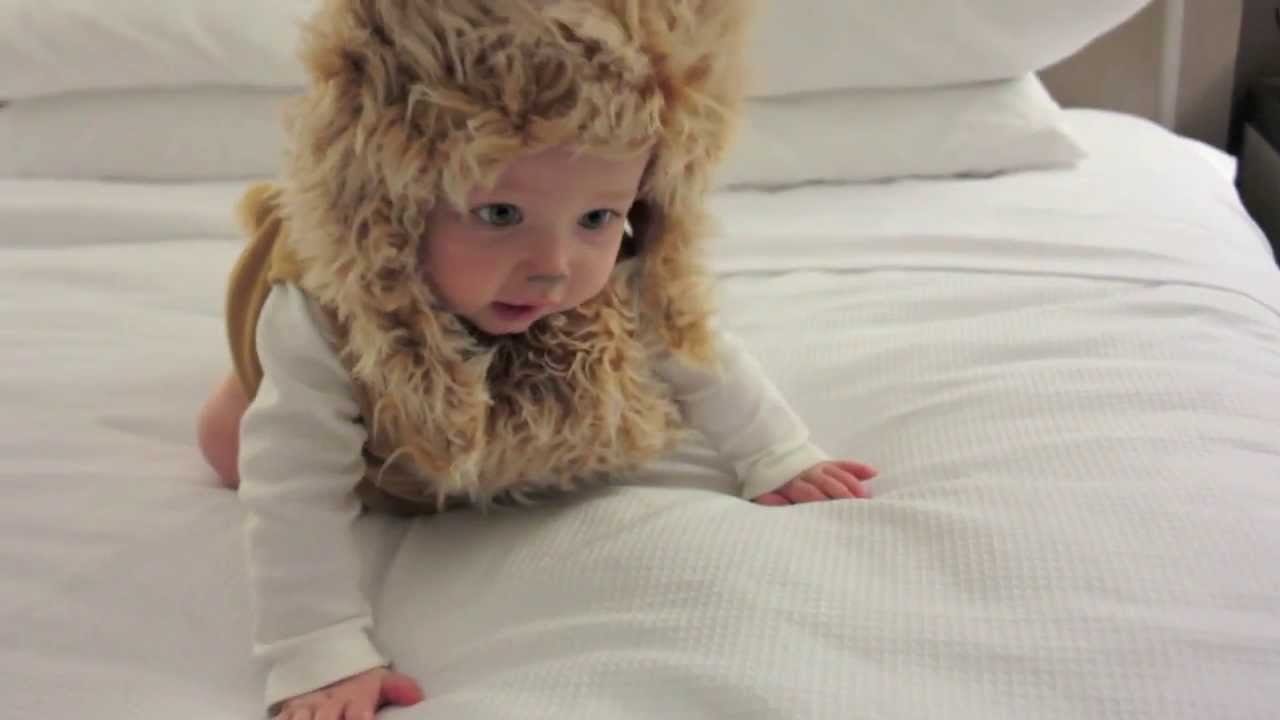 cutest baby lion ever! : baby's first halloween costume - youtube