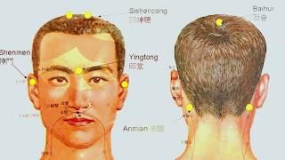 Punctele de aur ale corpului, secretele longevitatii la chinezi (Agenda Ta De Sanatate)