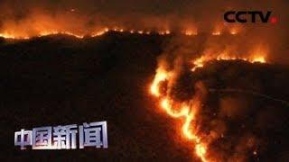 [中国新闻] 关注亚马孙雨林大火 巴西宣布接受用于亚马孙雨林灭火的国际捐款 | CCTV中文国际