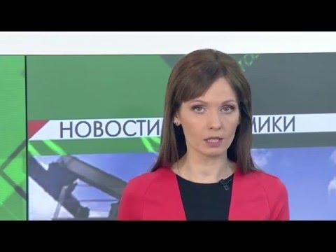 Казанский приют для бездомных животных в пос. Столбище