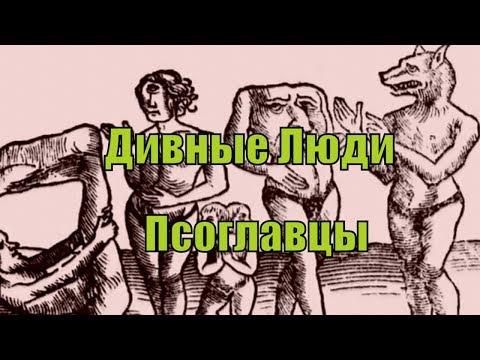 У всіх звільнених із полону найманців РФ були травми голови, 12 осіб зізналися, що їх ґвалтували, - Геращенко - Цензор.НЕТ 5523