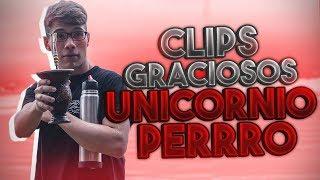 Clips GRACIOSOS de UNICORNIOPERRRO