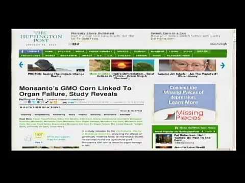 Alex Jones Tv  Monsanto's GMO Corn Link to Organ Failure!!