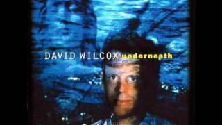 Watch David Wilcox Guilty Either Way video