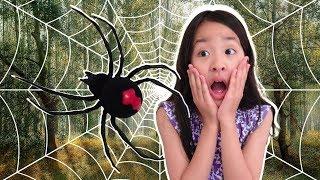 곤충체험 마법 요술봉으로 변신놀이 으악 거미가나타났다! 거미장난감 아엘튜브 spider creeping up pretend play