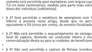 RESOLUÇÃO/COEMA Nº 020, DE 26 DE NOVEMBRO DE 2002