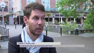 Législatives : EELV entre alliances et candidatures isolées dans les Yvelines