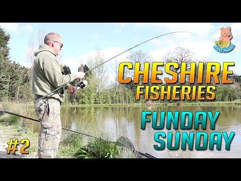Cheshire Fisheries - Funday Sunday! - Ep.2